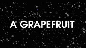 "Begriff; Signifikat; das Wort ""Grapefruit"""
